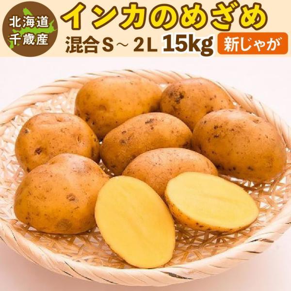 インカのめざめ 新じゃが 15kg  S〜2Lサイズ混合 北海道 千歳産 ご予約販売 9月下旬発送 じゃがいも ジャガイモ 送料無料 訳あり