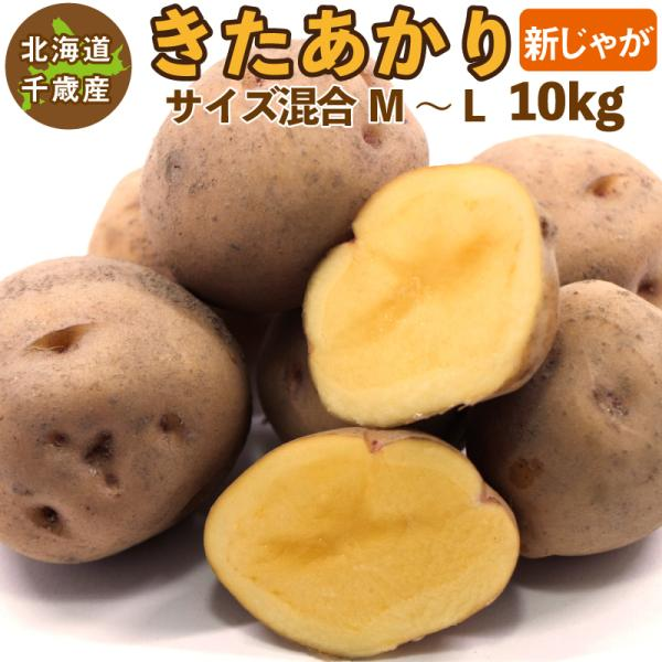 北海道産 きたあかり 新じゃが M〜Lサイズ混合 10kg  じゃがいも ジャガイモ キタアカリ 北あかり 送料無料 訳あり