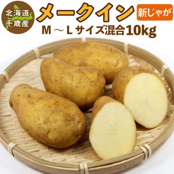 北海道産 メークイン 新じゃが M〜2Lサイズ混合 10kg   じゃがいも ジャガイモ 送料無料 訳あり