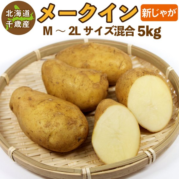 北海道産 メークイン 新じゃが M〜2Lサイズ混合 5kg  ご予約販売 9月中旬発送  じゃがいも ジャガイモ 送料無料 訳あり