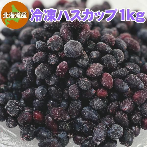 冷凍ハスカップ 1kg 北海道産 送料無料