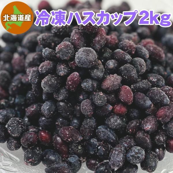 冷凍ハスカップ 2kg 北海道産 送料無料