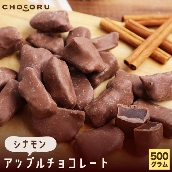 アップルチョコレート シナモン 500g りんご フルーツチョコ 業務用