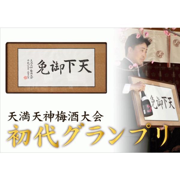 梅酒 プレゼント 高級 紅南高 受賞 chokyuan 10