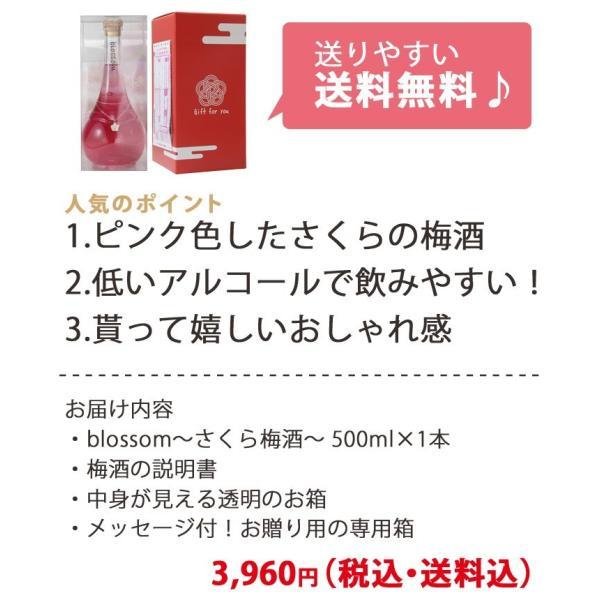 梅酒 お歳暮 ギフト お祝い 贈答用 送料無料|chokyuan|10