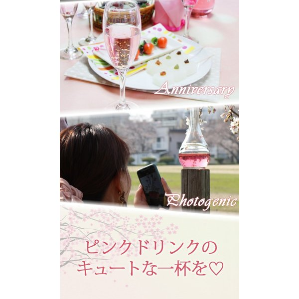 梅酒 お歳暮 ギフト お祝い 贈答用 送料無料|chokyuan|12