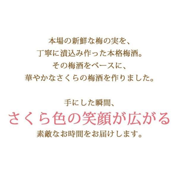 梅酒 お歳暮 ギフト お祝い 贈答用 送料無料|chokyuan|02