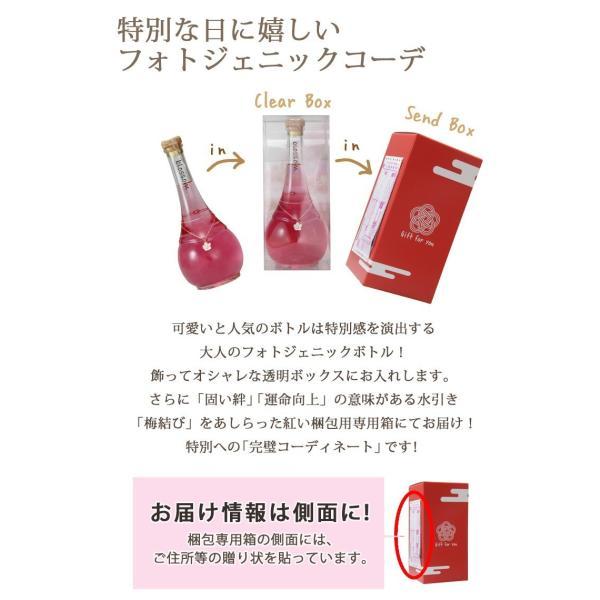梅酒 お歳暮 ギフト お祝い 贈答用 送料無料|chokyuan|05