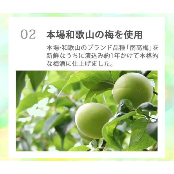 梅酒 お歳暮 ギフト お祝い 贈答用 送料無料|chokyuan|08