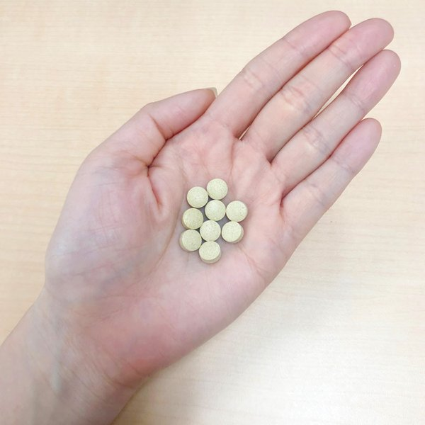 カキタンニン サプリメント 青柿 柿玉|chokyuan|05