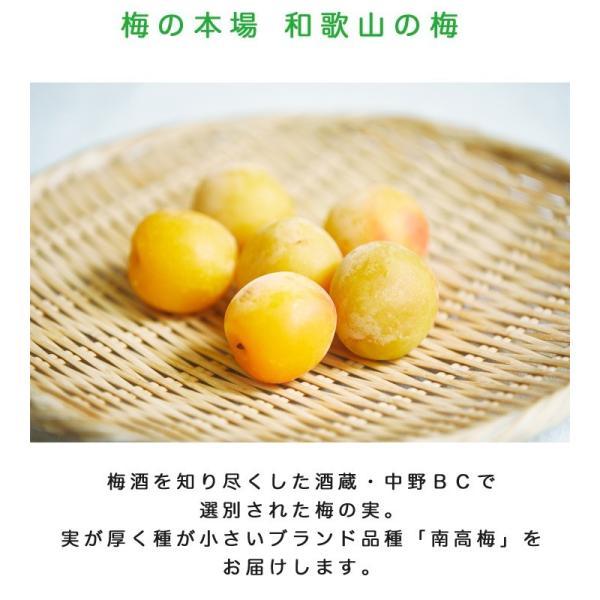 梅酒 手作り セット 瓶 梅酒用の梅|chokyuan|11
