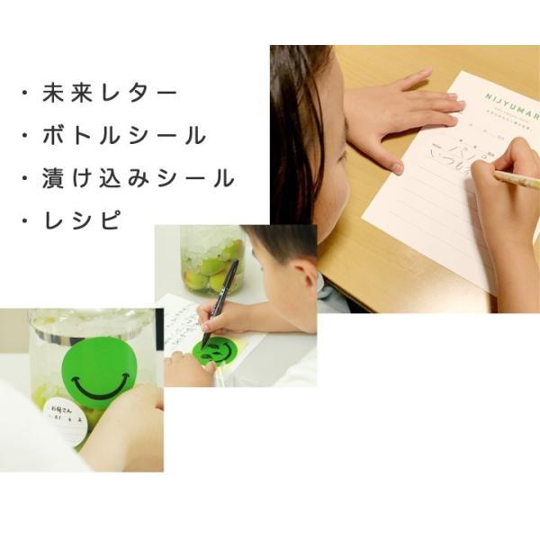 梅酒 手作り セット 瓶 梅酒用の梅|chokyuan|09
