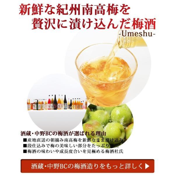 梅酒 プレゼント お酒 飲み比べ  送料無料 chokyuan 10