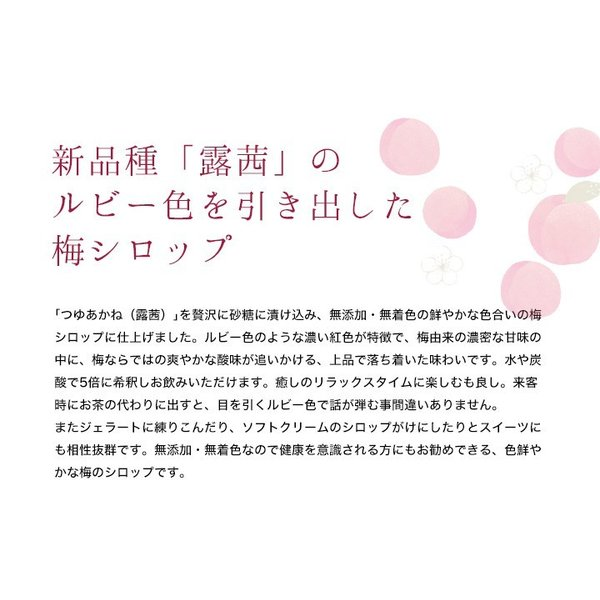 梅シロップ 梅ジュース ギフト TVチャンピオン極KIWAMI|chokyuan|03