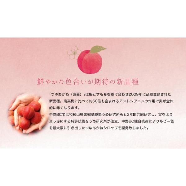 梅シロップ 梅ジュース ギフト TVチャンピオン極KIWAMI|chokyuan|04