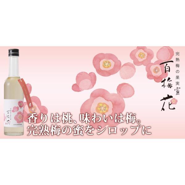 梅シロップ 梅ジュース ギフト TVチャンピオン極KIWAMI|chokyuan|06