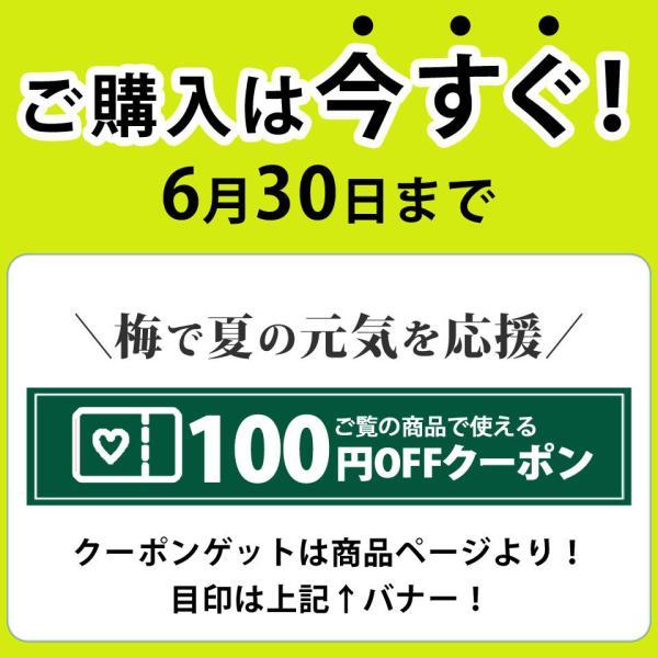 しょうが ショウガオール あさイチ サプリ 温活 梅肉エキス 梅しょうが|chokyuan|02