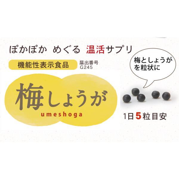 しょうが ショウガオール あさイチ サプリ 温活 梅肉エキス 梅しょうが|chokyuan|05