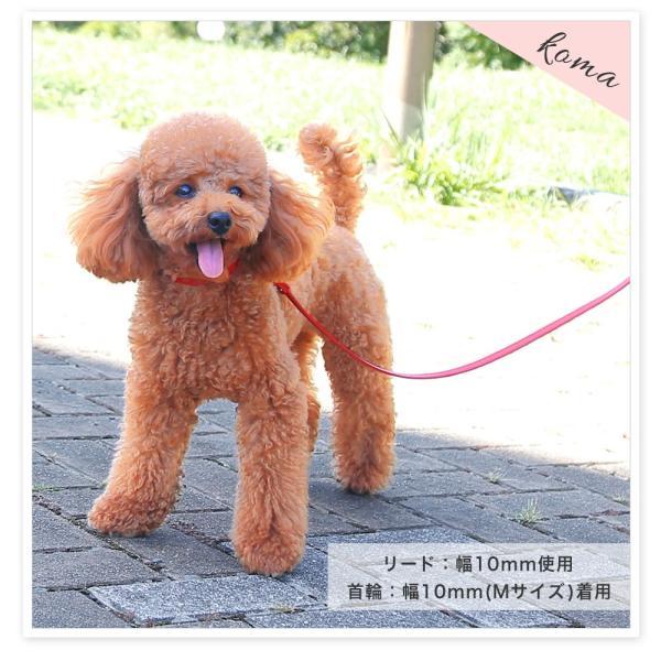犬 リード 犬用リード 小型犬 革 革製 皮 本革 レザー 栃木レザー おしゃれ かわいい 犬のリード 首輪 シンプル 10mm|choupet|03