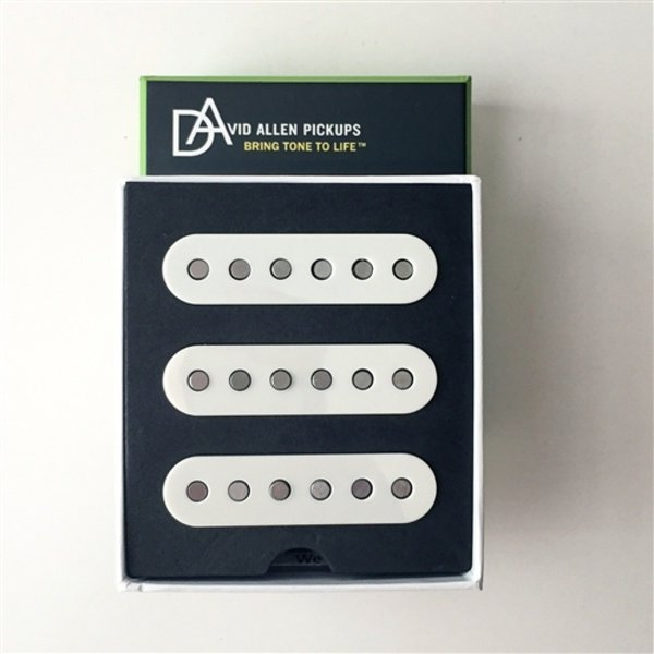 D.Allen Pickups TEXAS FLOOD PARCHMENT set ピックアップ|chuya-online