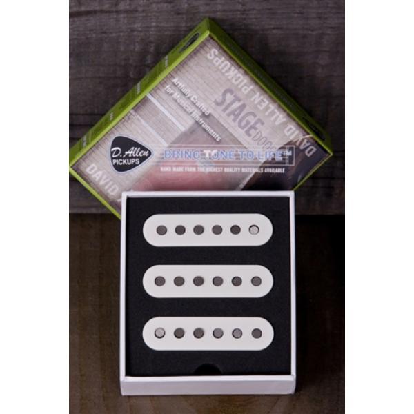 D.Allen Pickups TRU 62's WHITE set ピックアップ|chuya-online