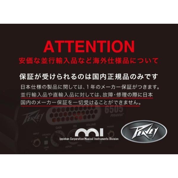 PEAVEY 6505 Piranha ギターアンプヘッド 専用キャビネット Hosa スピーカーケーブル1.5m付き 3点セット 【国内正規品】 chuya-online 05