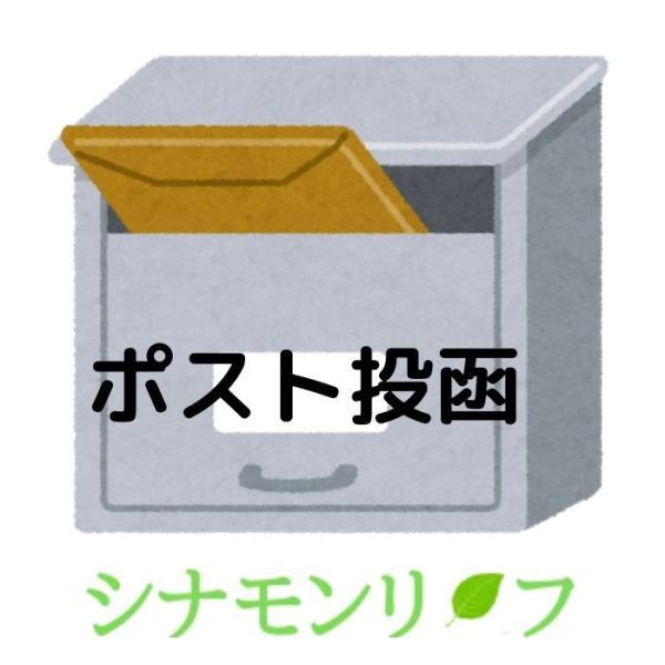 オレンジスイート アロマオイル 精油 エッセンシャルオイル 生活の木 3ml|cinnamonleaf|04