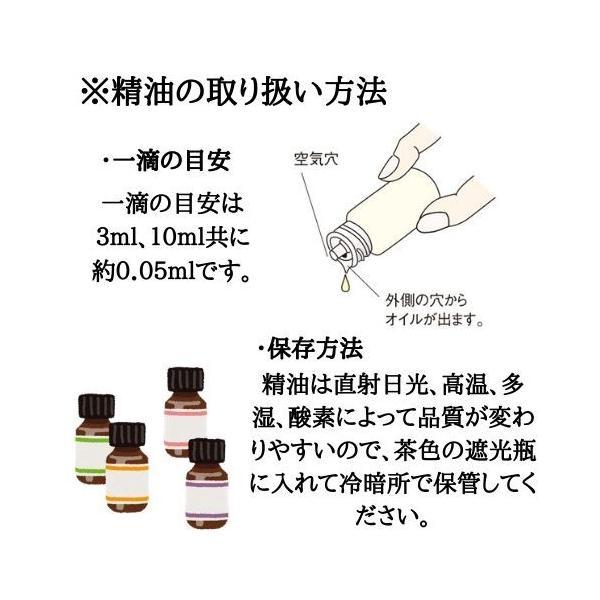 オレンジスイート アロマオイル 精油 エッセンシャルオイル 生活の木 3ml|cinnamonleaf|06