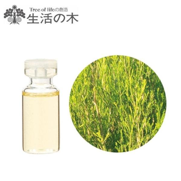 ラベンダーティートリー アロマオイル 精油 エッセンシャルオイル 生活の木 10ml  cinnamonleaf 02