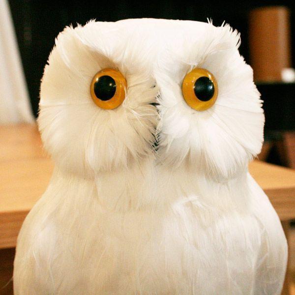 プエブコ PUEBCO バードオブジェ ARTIFICIAL BIRDS 白フクロウ Lサイズ 111070|citron-g|03
