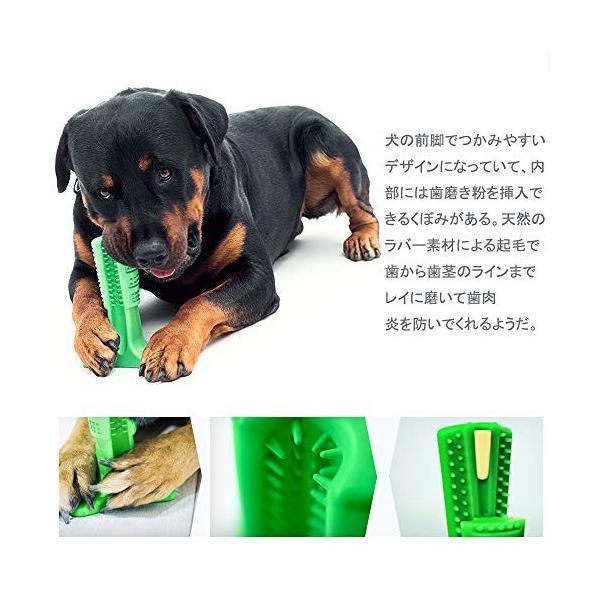 ワンちゃん自らが進んで歯磨きをしたくなる犬用歯ブラシ 「中サイズ」|clairdelune9126|04