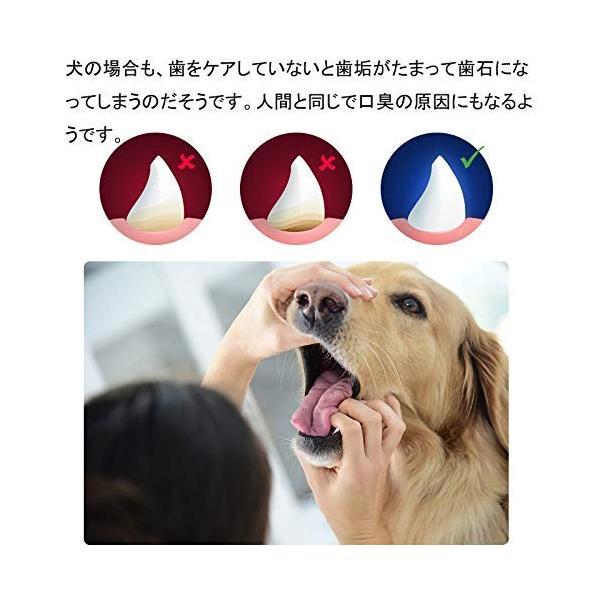 ワンちゃん自らが進んで歯磨きをしたくなる犬用歯ブラシ 「中サイズ」|clairdelune9126|06