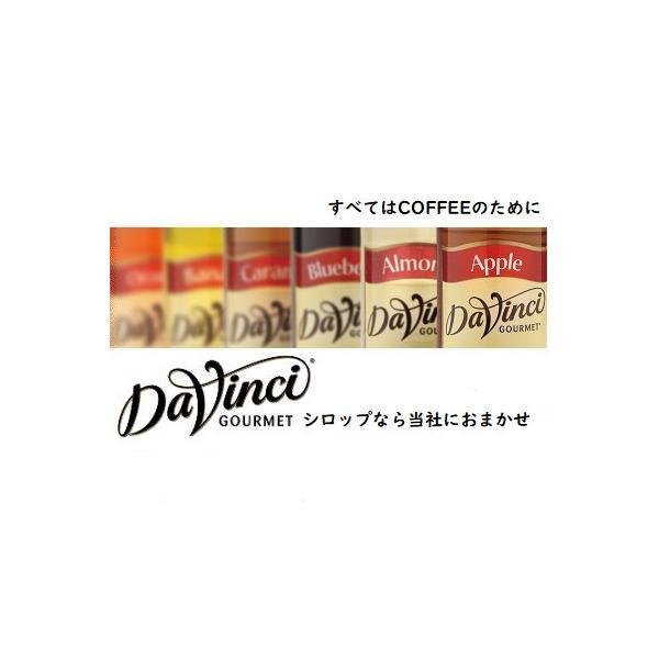 ダヴィンチ フレーバーシロップ ヘーゼルナッツ PET  750ml Davinci|classicalcoffee|03