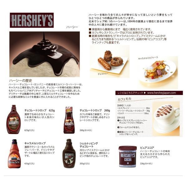 チョコレートソース HERSHEY'S ハーシー チョコレートシロップ 業務用  623g(NEW) 12本  ( 1ケース ) |classicalcoffee|02