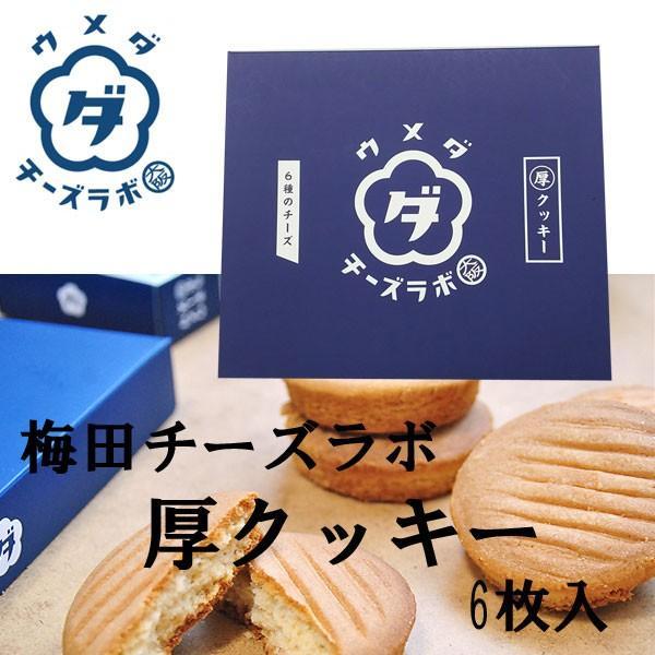 梅田チーズラボ 厚クッキー 6枚 クール便|climb-store