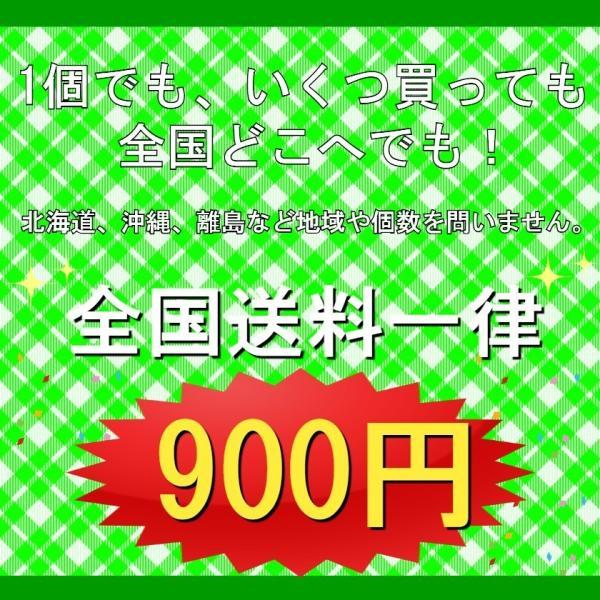 スパシャン FREEトラシャン3 1本 500ml 寒冷地仕様 -18度まで対応 カーシャンプー 洗車 トラッカー トラック 疎水性 コーティング剤 SPASHAN club-hart 04