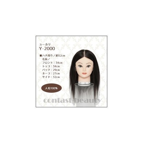 美容雑貨3 ヘア小物 ユーカリ ウィッグ Y-2000 人毛100% 美容師 練習 マネキン