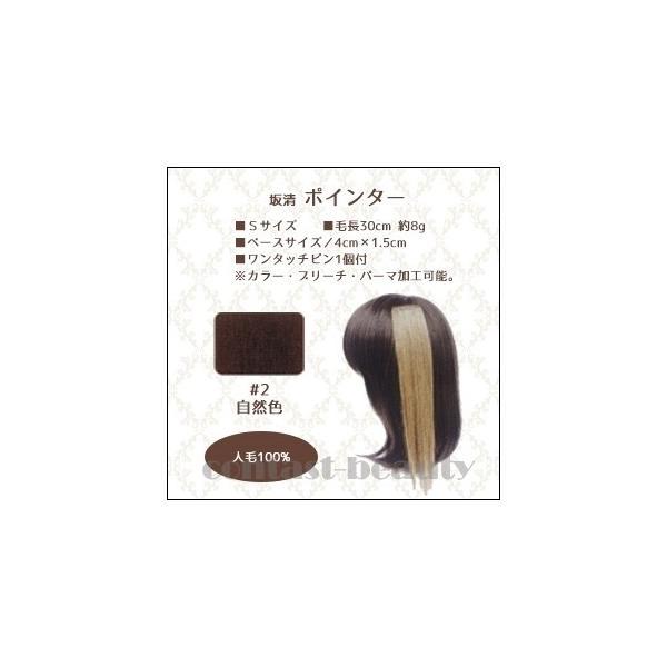 [x3個セット] 美容雑貨3 ヘア小物 坂清 ポインター S 30cm #2 自然色 人毛100%