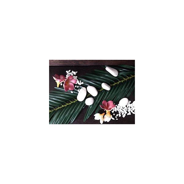 サイカスリーフ(4枚セット)   造花 リアル インテリアグリーン フェイクグリーン 南国 夏 トロピカル 葉っぱ バリ雑貨  ココバリ|cocobari|05
