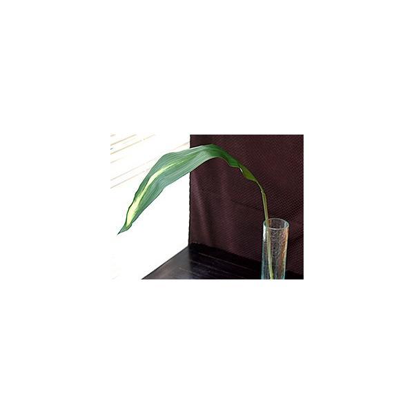ハラン(2枚セット)   造花 リアル インテリアグリーン フェイクグリーン 南国 夏 トロピカル 葉っぱ バリ雑貨 ココバリ|cocobari|05