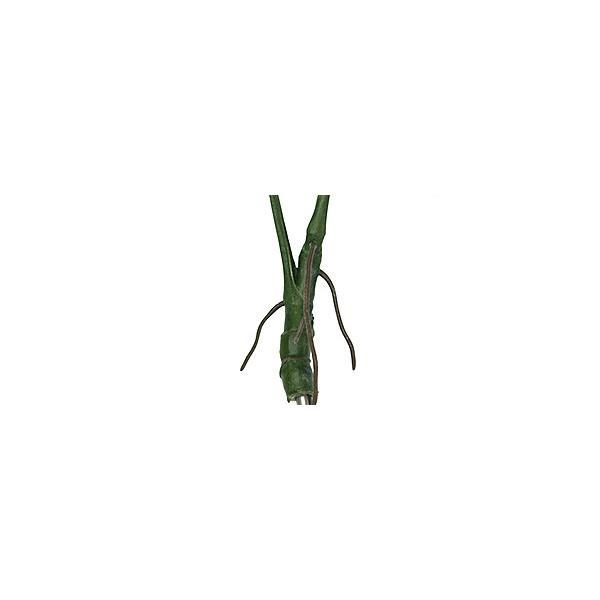 モンステラ株立ちタイプ   造花 リアル インテリアグリーン フェイクグリーン バリ雑貨 ココバリ cocobari 05