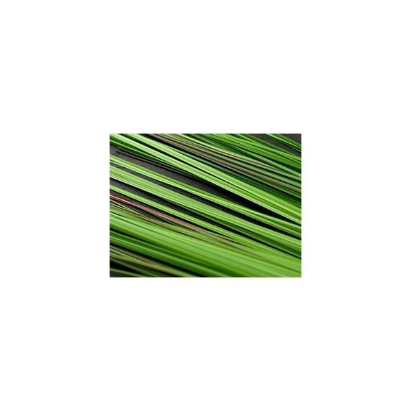 ストーンVASEスクエア(バンブー、ベアグラス3本付き) lxl アジアン バリ フラワーベース 石 おしゃれ リゾート バリ雑貨 インテリア ココバリ|cocobari|07