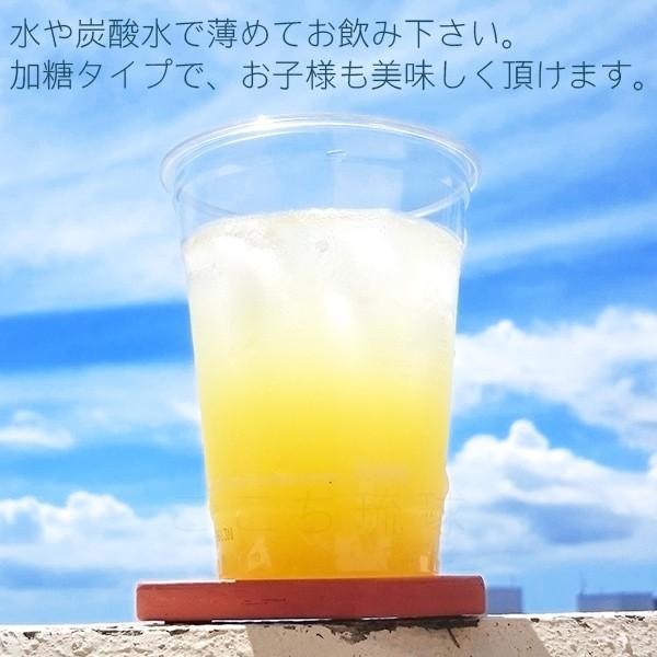 オキハム 沖縄シークワーサー 希釈タイプ 500ml×2本 (小型宅配便で送料無料)|cocochir|02