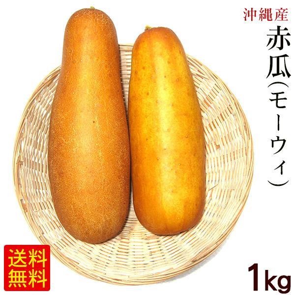 赤瓜(モーウィ)1kg /沖縄野菜 モーウイ モーイ :270:沖縄通販 ここち ...