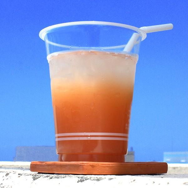 沖縄バヤリース グァバ 500ml×24本 果汁10% グァバジュース cocochir 02