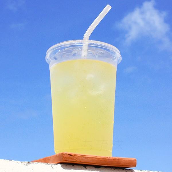 沖縄バヤリース シークワーサー 500ml×24本 果汁10%未満 /シークワーサージュース|cocochir|03