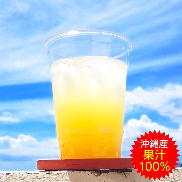 シークワーサージュース シークヮーサー100 原液 500ml×3本  JAおきなわ 青切り 果汁100%|cocochir|02