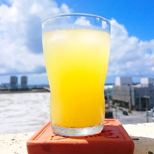 シークワーサー100 果汁100% 500ml×3本 /JAおきなわ 青切りシークワーサー ジュース 原液 ノビレチン|cocochir|03