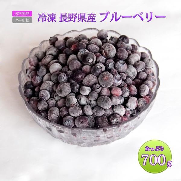 ブルーベリー 国産 長野県産 冷凍 フルーツ 訳あり 大容量 700g