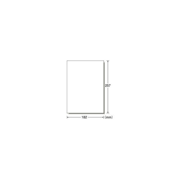 【お取り寄せ】エーワン/フリーラベルワイド 手書き用 B5 ノーカット 500枚/06195